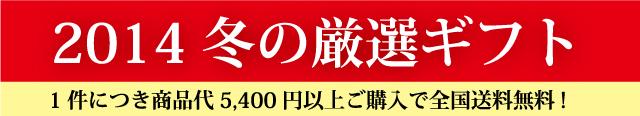 oseibo2.jpg