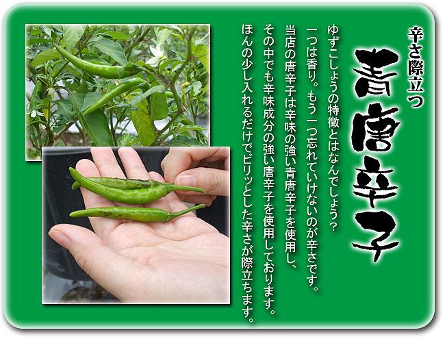 辛さ際立つ青唐辛子 - 柚子胡椒(ゆずこしょう)