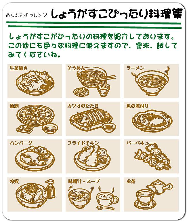 SHOGASCO(しょうがすこ)ピッタリ料理集